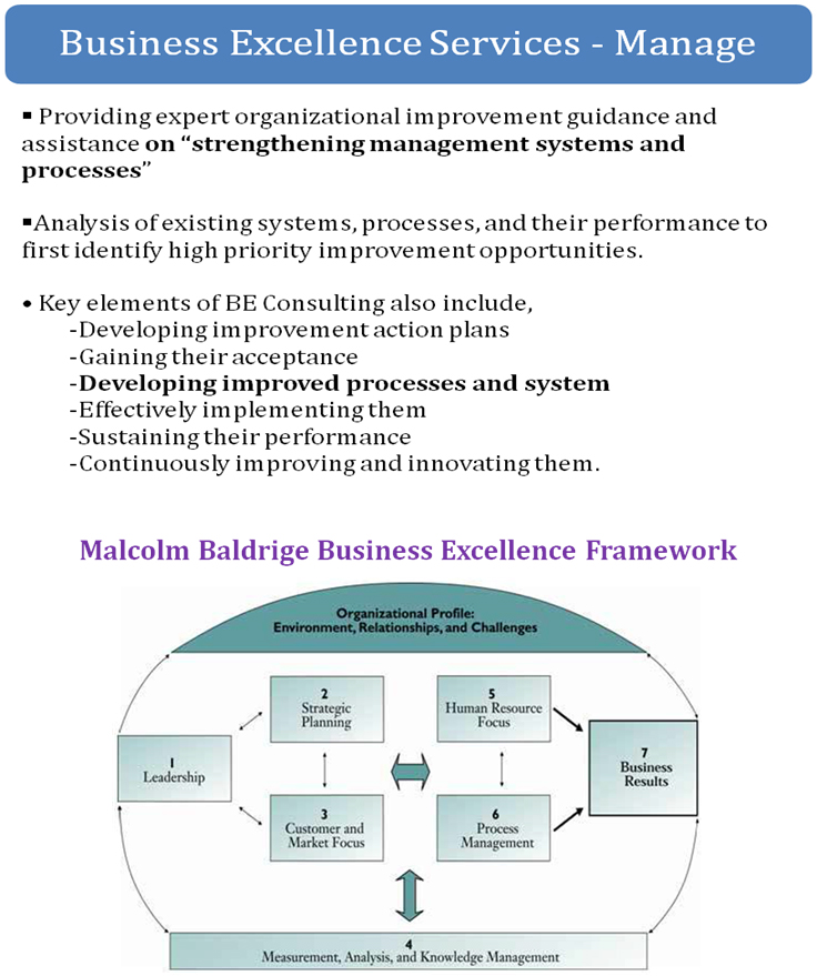 business-excellence-services-manage